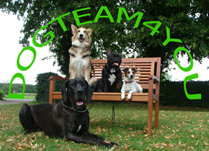 dogteam4you